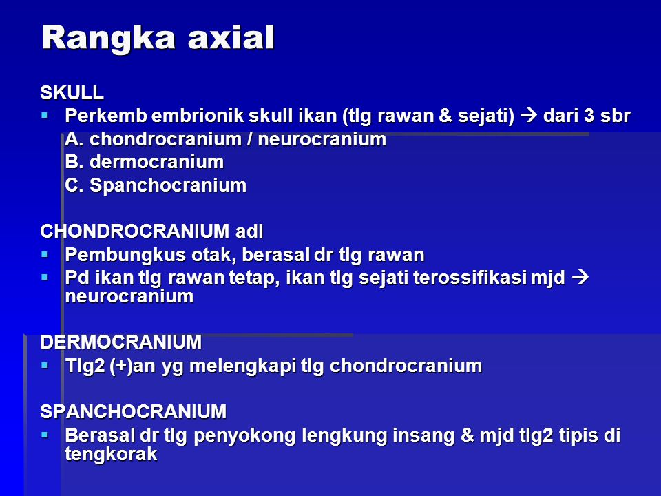 Gbr vertebrae batang ekor (14)