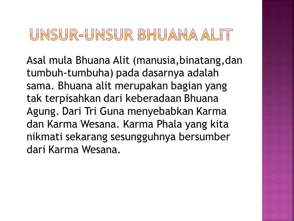 Asal mula Bhuana Alit (manusia,binatang,dan tumbuh-tumbuha) pada dasarnya adalah sama.