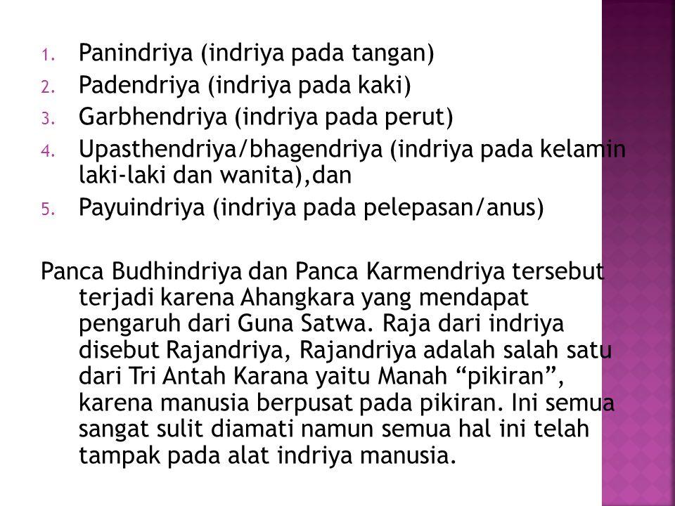 1.Panindriya (indriya pada tangan) 2. Padendriya (indriya pada kaki) 3.