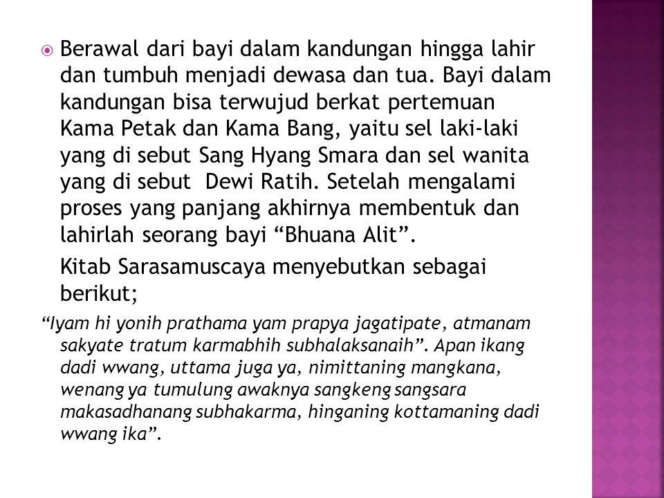 Demikianlah proses terciptanya Bhuana Alit, yang diciptakan dan berasal dari yang tunggal Tuhan .