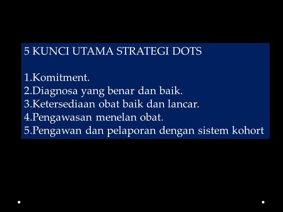 5 KUNCI UTAMA STRATEGI DOTS 1.Komitment.2.Diagnosa yang benar dan baik.