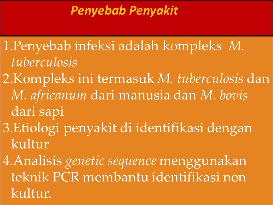 Penyebab Penyakit 1.Penyebab infeksi adalah kompleks M. tuberculosis 2.Kompleks ini termasuk M. tuberculosis dan M. africanum dari manusia dan M. bovi