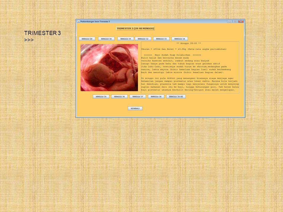 Tampilan Halaman Trimester TRIMESTER 1 >>> TRIMESTER 2 >>>