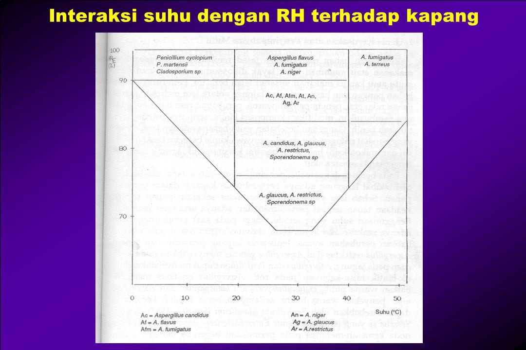 Interaksi suhu dengan RH terhadap kapang