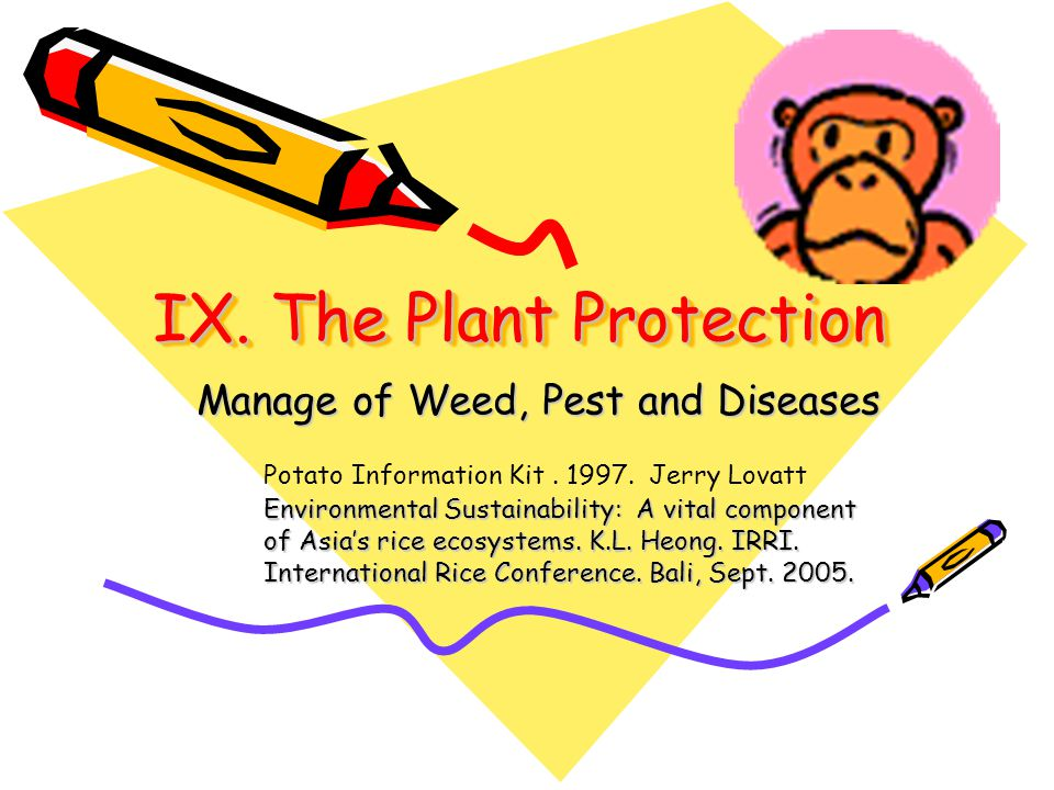 IX. The Plant Protection Manage of Weed, Pest and Diseases Potato Information Kit.
