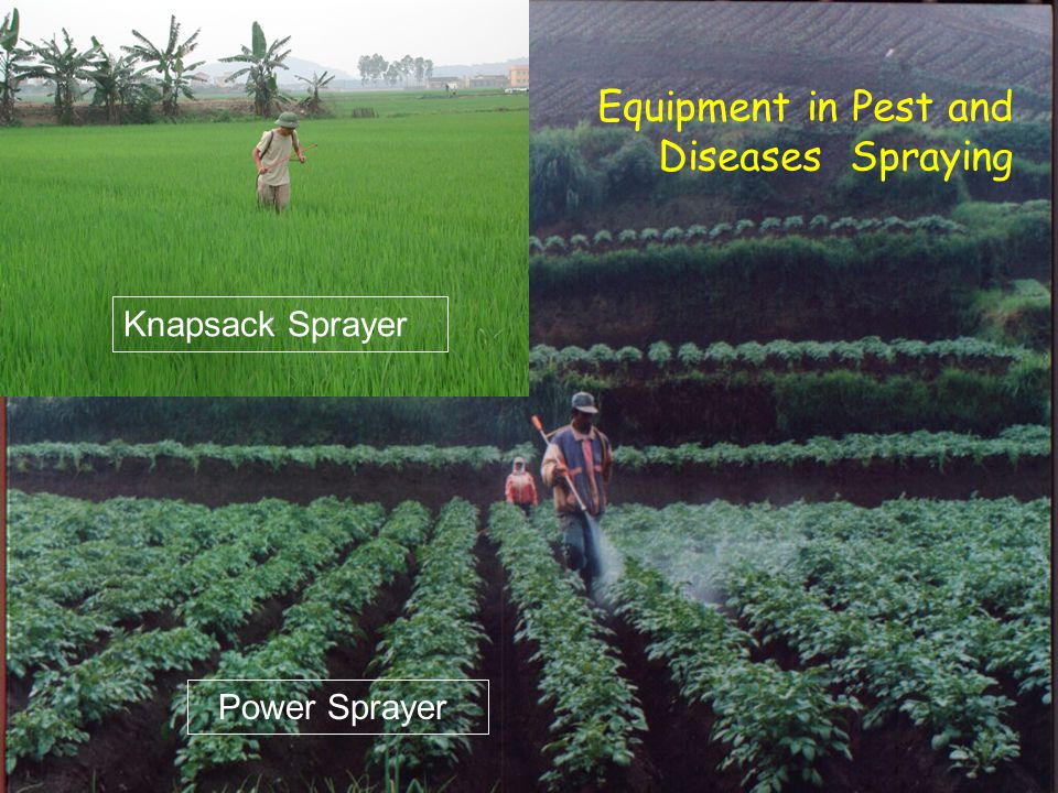 Equipment in Pest and Diseases Spraying Power Sprayer Knapsack Sprayer