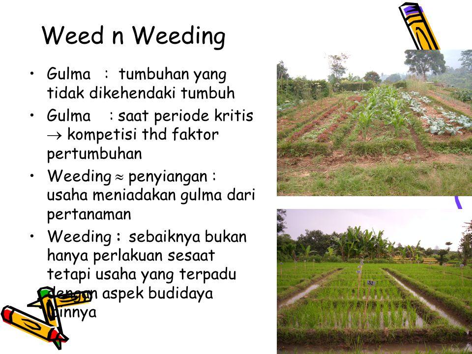 Weed n Weeding Gulma : tumbuhan yang tidak dikehendaki tumbuh Gulma : saat periode kritis  kompetisi thd faktor pertumbuhan Weeding  penyiangan : usaha meniadakan gulma dari pertanaman Weeding : sebaiknya bukan hanya perlakuan sesaat tetapi usaha yang terpadu dengan aspek budidaya lainnya