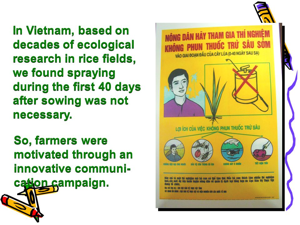 In Vietnam, based on decades of ecological research in rice fields, we found spraying during the first 40 days after sowing was not necessary.
