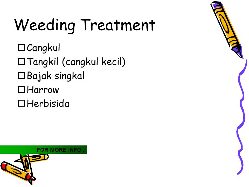 Weeding Treatment  Cangkul  Tangkil (cangkul kecil)  Bajak singkal  Harrow  Herbisida FOR MORE INFO...