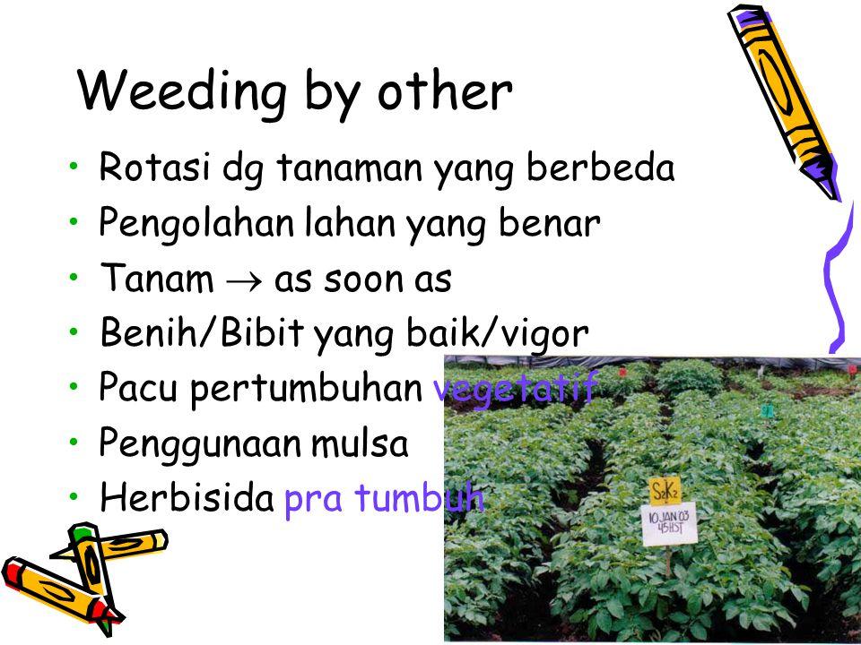 Weeding by other Rotasi dg tanaman yang berbeda Pengolahan lahan yang benar Tanam  as soon as Benih/Bibit yang baik/vigor Pacu pertumbuhan vegetatif Penggunaan mulsa Herbisida pra tumbuh
