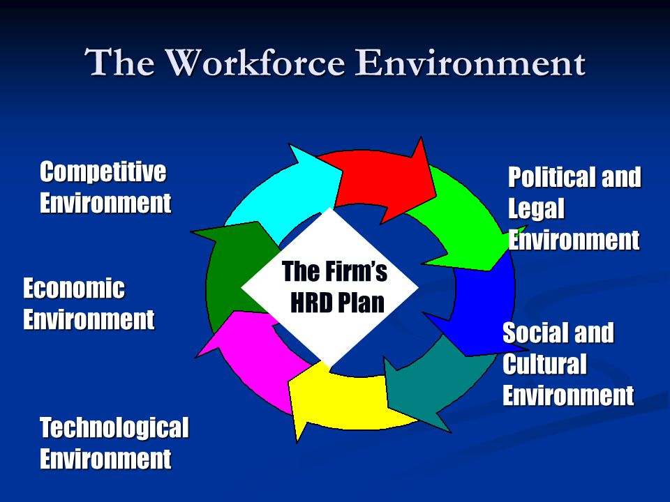 The Workforce Environment The Firm's HRD Plan CompetitiveEnvironment Political and LegalEnvironment Social and CulturalEnvironment TechnologicalEnviro