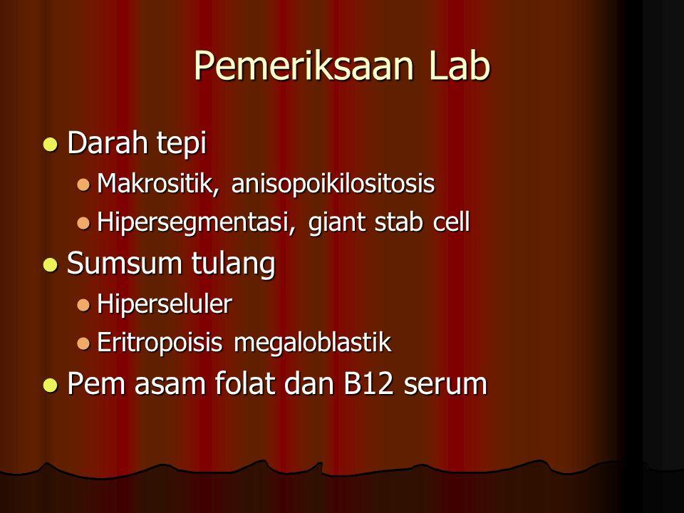 Pemeriksaan Lab Darah tepi Darah tepi Makrositik, anisopoikilositosis Makrositik, anisopoikilositosis Hipersegmentasi, giant stab cell Hipersegmentasi, giant stab cell Sumsum tulang Sumsum tulang Hiperseluler Hiperseluler Eritropoisis megaloblastik Eritropoisis megaloblastik Pem asam folat dan B12 serum Pem asam folat dan B12 serum