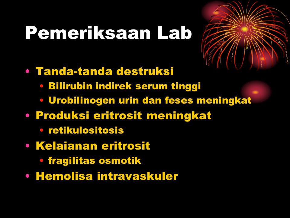 Pemeriksaan Lab Tanda-tanda destruksi Bilirubin indirek serum tinggi Urobilinogen urin dan feses meningkat Produksi eritrosit meningkat retikulositosis Kelaianan eritrosit fragilitas osmotik Hemolisa intravaskuler