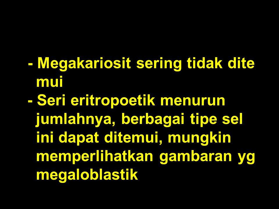 - Megakariosit sering tidak dite mui - Seri eritropoetik menurun jumlahnya, berbagai tipe sel ini dapat ditemui, mungkin memperlihatkan gambaran yg me