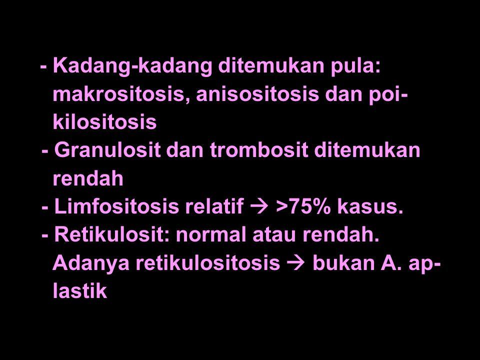 - Kadang-kadang ditemukan pula: makrositosis, anisositosis dan poi- kilositosis - Granulosit dan trombosit ditemukan rendah - Limfositosis relatif  >