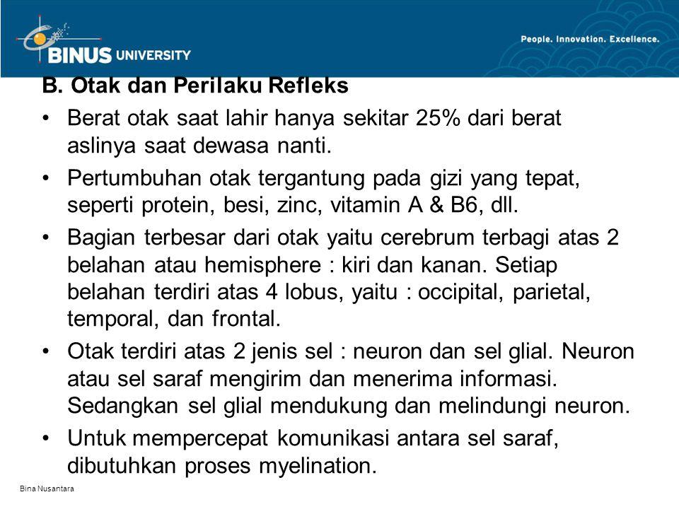 Bina Nusantara B. Otak dan Perilaku Refleks Berat otak saat lahir hanya sekitar 25% dari berat aslinya saat dewasa nanti. Pertumbuhan otak tergantung
