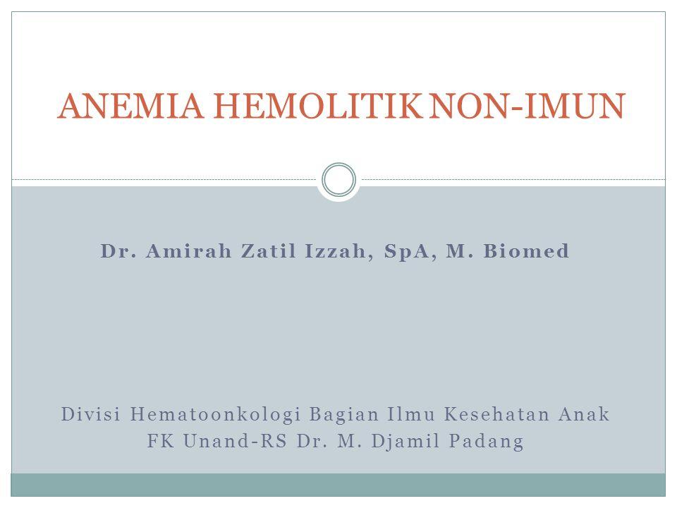 Dr.Amirah Zatil Izzah, SpA, M.
