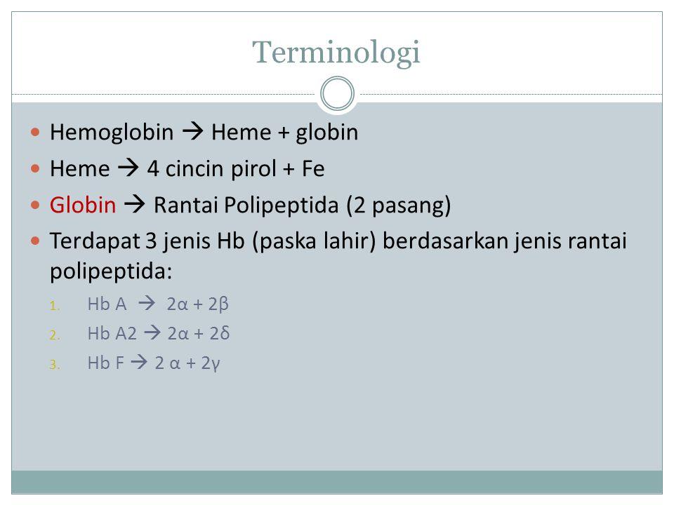Terminologi Hemoglobin  Heme + globin Heme  4 cincin pirol + Fe Globin  Rantai Polipeptida (2 pasang) Terdapat 3 jenis Hb (paska lahir) berdasarkan jenis rantai polipeptida: 1.