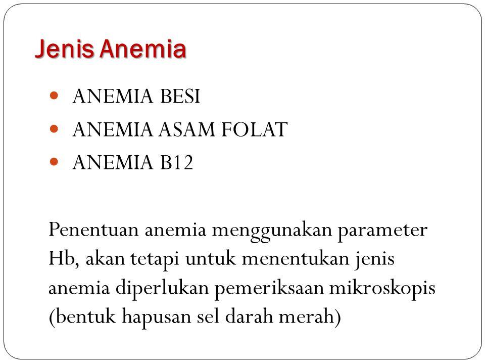Jenis Anemia ANEMIA BESI ANEMIA ASAM FOLAT ANEMIA B12 Penentuan anemia menggunakan parameter Hb, akan tetapi untuk menentukan jenis anemia diperlukan