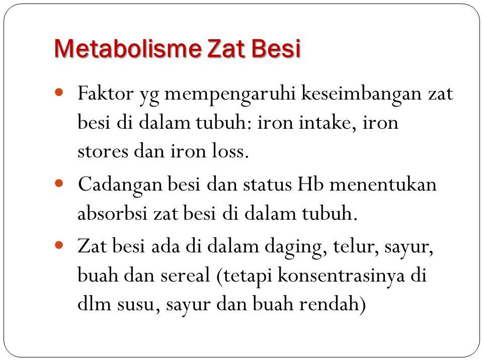 Metabolisme Zat Besi Faktor yg mempengaruhi keseimbangan zat besi di dalam tubuh: iron intake, iron stores dan iron loss. Cadangan besi dan status Hb