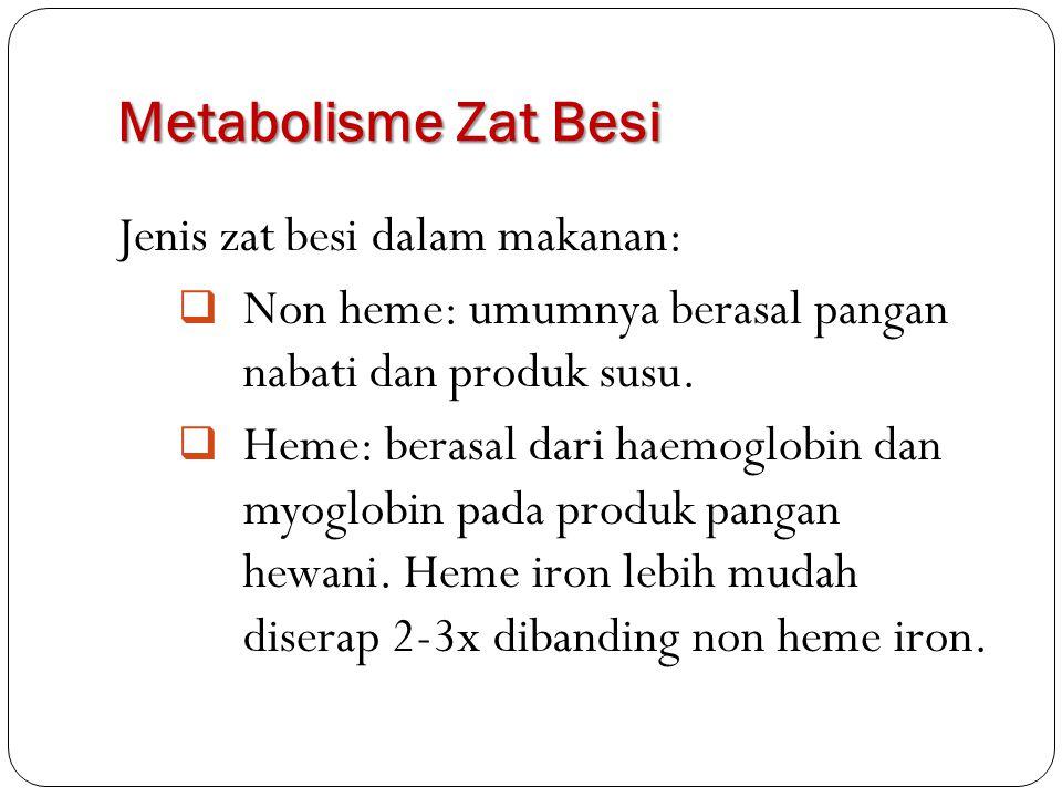 Metabolisme Zat Besi Jenis zat besi dalam makanan:  Non heme: umumnya berasal pangan nabati dan produk susu.  Heme: berasal dari haemoglobin dan myo