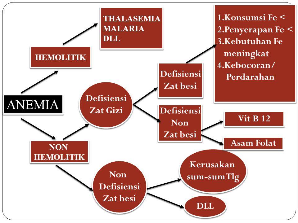 DISTRIBUSI ANEMIA ANEMIA Fe ANEMIA FOLAT ANEMIA B12 Balita, ibu hamil, ibu menyusui dan WUS Fase pertumbuhan, sosek rendah Vegetarian yang ketat, gangguan absorbsi, cacing Diphyllobotrium Latum, konsumsi PAS (Para Amino Salicill acid)