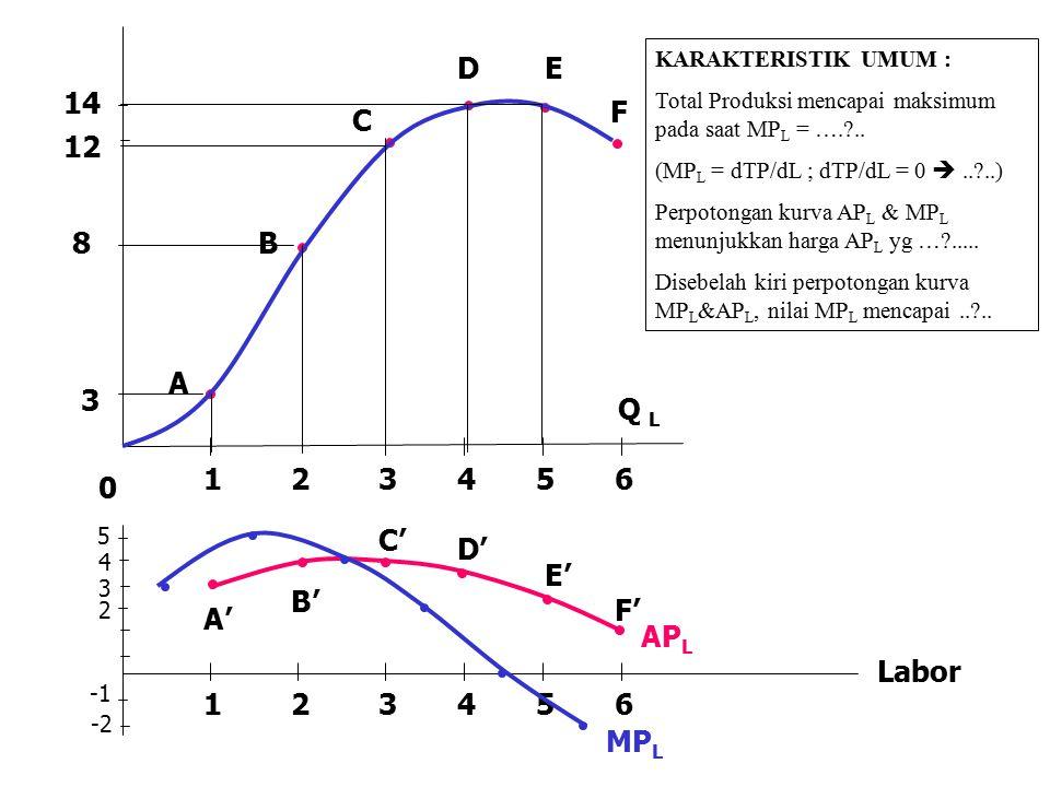 A B C DE F 123456 3 8 14 Q L 0 5 4 3 2 -2 123456 MP L AP L A' B' C' D' E' F' Labor KARAKTERISTIK UMUM : Total Produksi mencapai maksimum pada saat MP