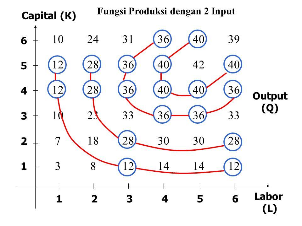 102431364039 122836404240 12283640 36 10233336 33 7182830 28 381214 12 123456 1 2 3 4 5 6 Output (Q) Capital (K) Labor (L) Fungsi Produksi dengan 2 In