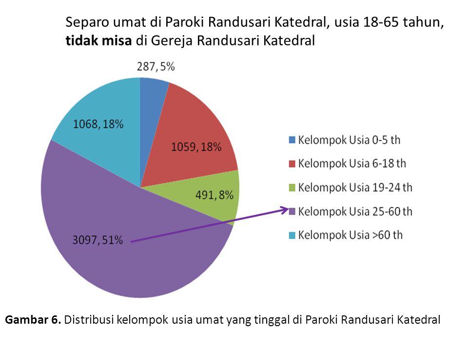 Gambar 6. Distribusi kelompok usia umat yang tinggal di Paroki Randusari Katedral Separo umat di Paroki Randusari Katedral, usia 18-65 tahun, tidak mi