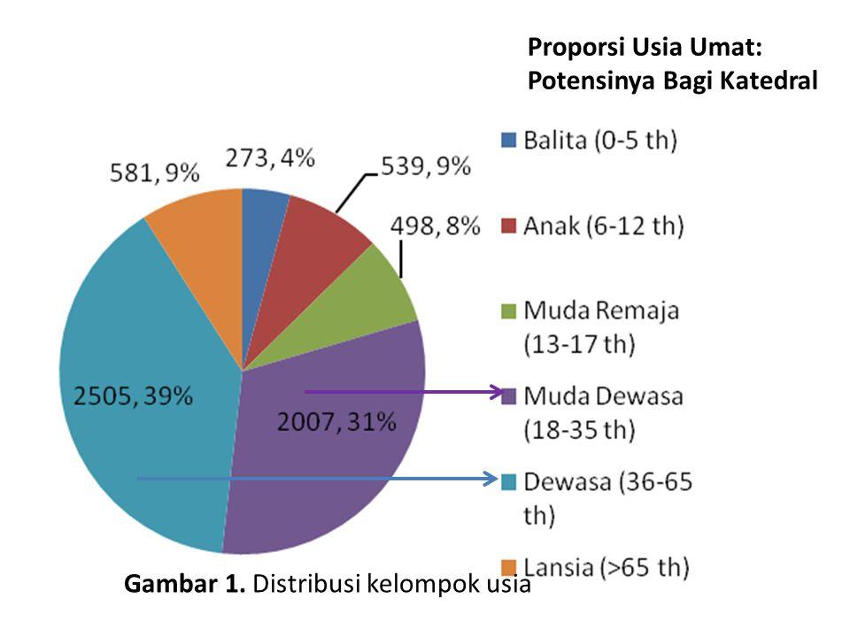 Gambar 1. Distribusi kelompok usia Proporsi Usia Umat: Potensinya Bagi Katedral