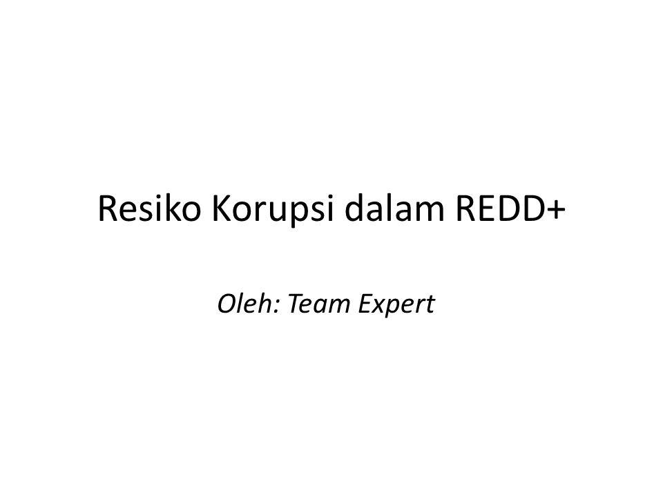 Resiko Korupsi dalam REDD+ Oleh: Team Expert