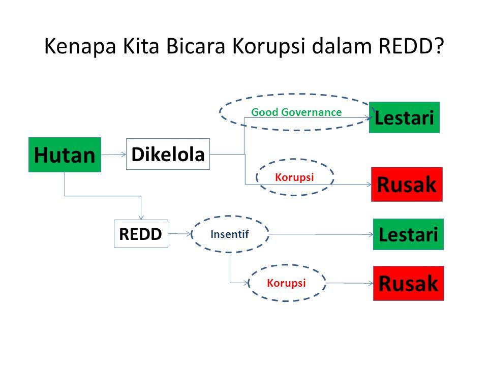 Kenapa Kita Bicara Korupsi dalam REDD.