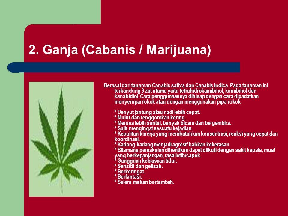 Berasal dari tanaman Canabis sativa dan Canabis indica. Pada tanaman ini terkandung 3 zat utama yaitu tetrahidrokanabinol, kanabinol dan kanabidiol. C