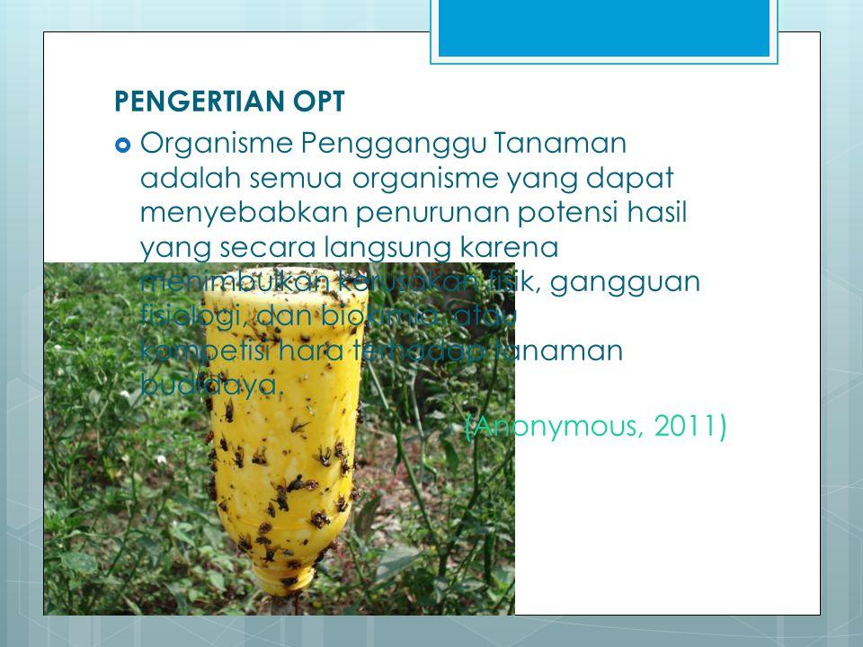 PENGERTIAN OPT  Organisme Pengganggu Tanaman adalah semua organisme yang dapat menyebabkan penurunan potensi hasil yang secara langsung karena menimb