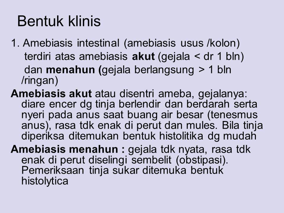 Bentuk klinis 1. Amebiasis intestinal (amebiasis usus /kolon) terdiri atas amebiasis akut (gejala < dr 1 bln) dan menahun (gejala berlangsung > 1 bln