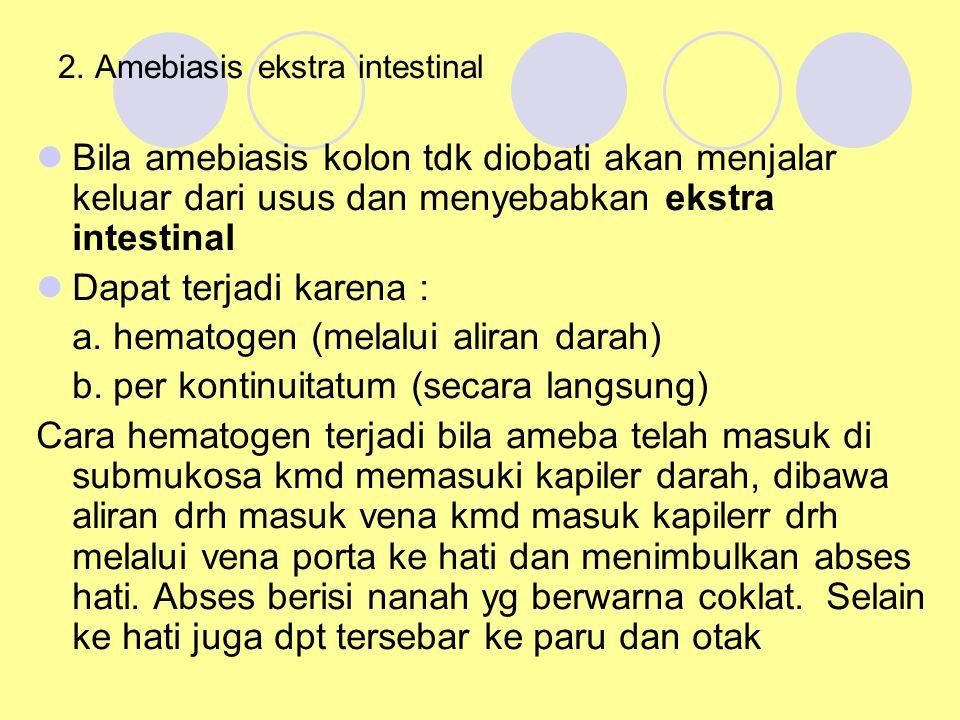 2. Amebiasis ekstra intestinal Bila amebiasis kolon tdk diobati akan menjalar keluar dari usus dan menyebabkan ekstra intestinal Dapat terjadi karena
