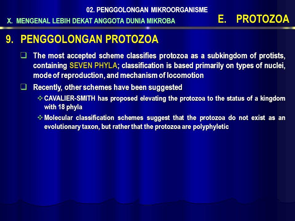 X. MENGENAL LEBIH DEKAT ANGGOTA DUNIA MIKROBA 02. PENGGOLONGAN MIKROORGANISME E.PROTOZOA  The most accepted scheme classifies protozoa as a subkingdo