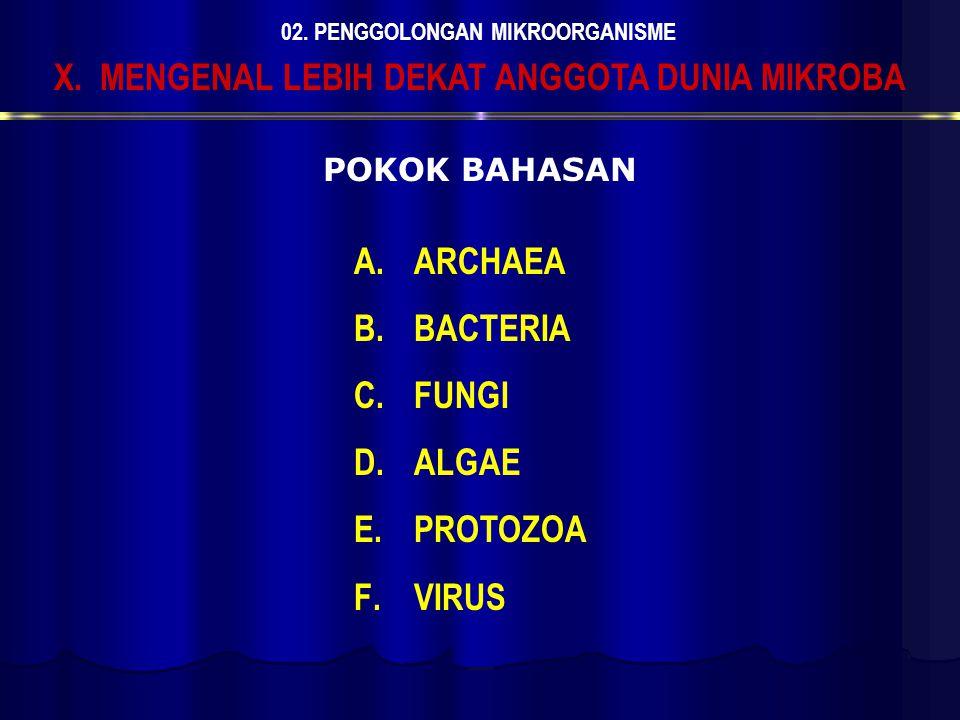 A.ARCHAEA B.BACTERIA C.FUNGI D.ALGAE E.PROTOZOA F.VIRUS X. MENGENAL LEBIH DEKAT ANGGOTA DUNIA MIKROBA 02. PENGGOLONGAN MIKROORGANISME POKOK BAHASAN