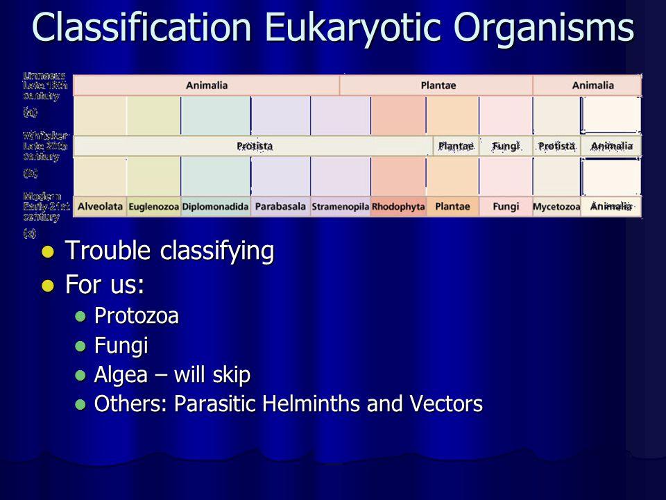 Classification Eukaryotic Organisms Trouble classifying Trouble classifying For us: For us: Protozoa Protozoa Fungi Fungi Algea – will skip Algea – wi
