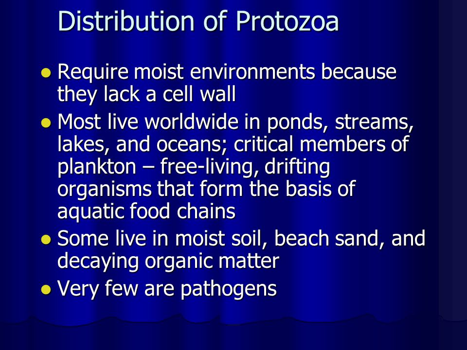 Distribution of Protozoa Require moist environments because they lack a cell wall Require moist environments because they lack a cell wall Most live w