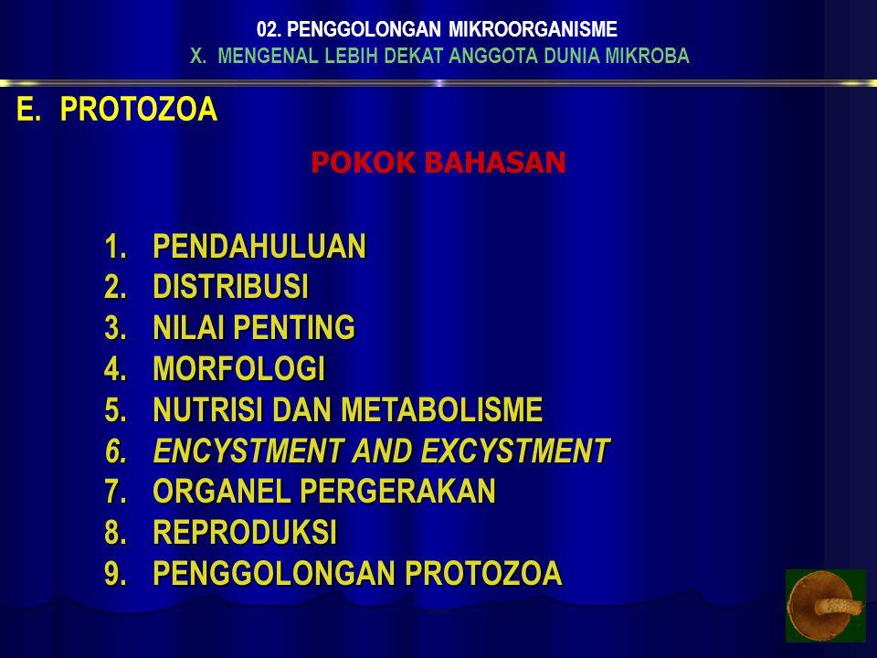 X. MENGENAL LEBIH DEKAT ANGGOTA DUNIA MIKROBA 02. PENGGOLONGAN MIKROORGANISME E.PROTOZOA POKOK BAHASAN 1.P ENDAHULUAN 2.D ISTRIBUSI 3.N ILAI PENTING 4
