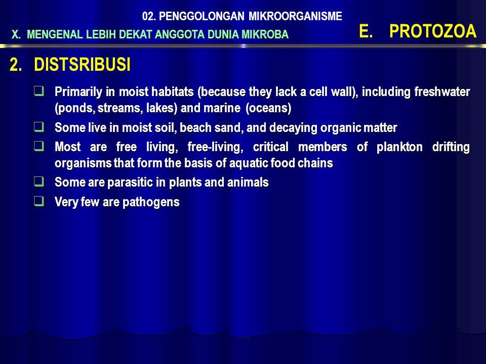 X. MENGENAL LEBIH DEKAT ANGGOTA DUNIA MIKROBA 02. PENGGOLONGAN MIKROORGANISME E.PROTOZOA  Primarily in moist habitats (because they lack a cell wall)