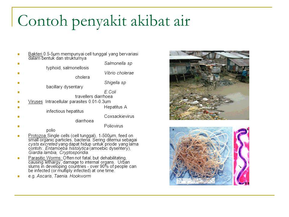 Contoh penyakit akibat air Bakteri 0.5-5μm mempunyai cell tunggal yang bervariasi dalam bentuk dan strukturnya Salmonella sp typhoid, salmonellosis Vi