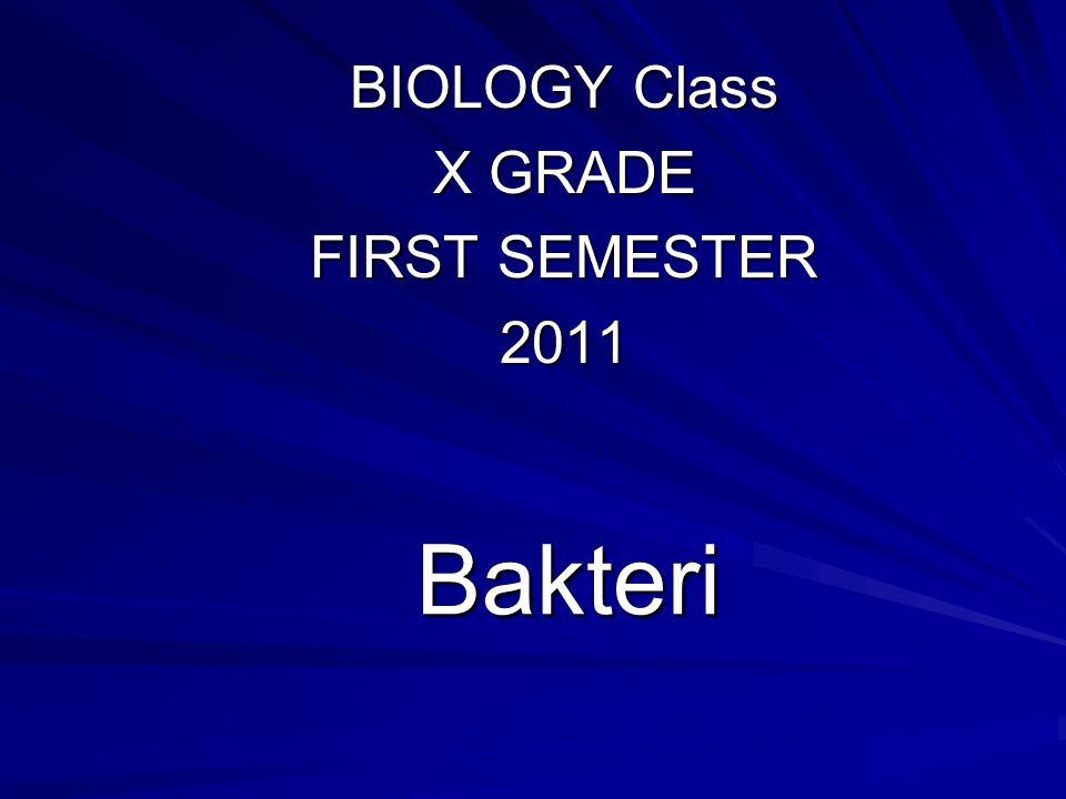 Bakteri BIOLOGY Class X GRADE FIRST SEMESTER 2011