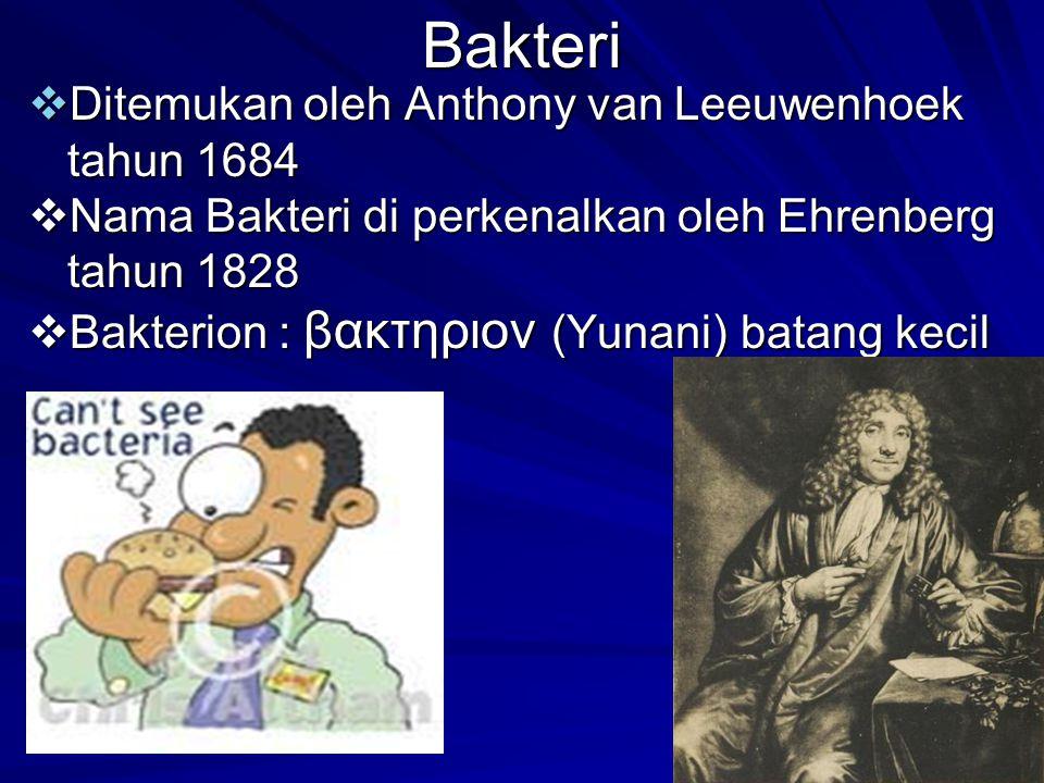 Bakteri  Ditemukan oleh Anthony van Leeuwenhoek tahun 1684  Nama Bakteri di perkenalkan oleh Ehrenberg tahun 1828  Bakterion : βακτηριον (Yunani) batang kecil