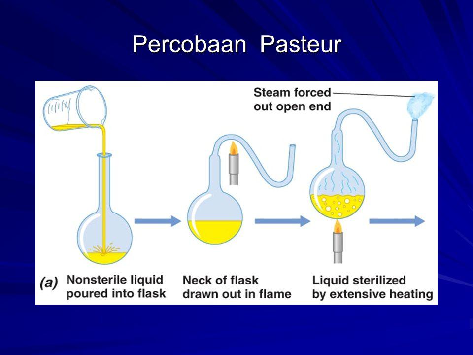Percobaan Pasteur