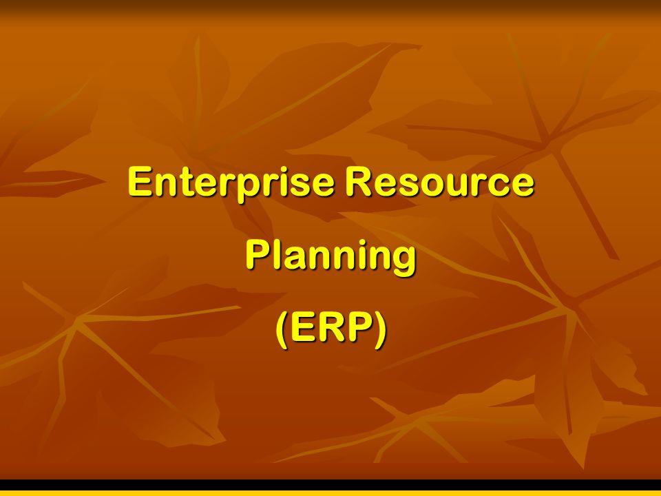 Analisa Sumberdaya Manusia  Bagaimana komitment top management thd usaha untuk implementasi ERP.