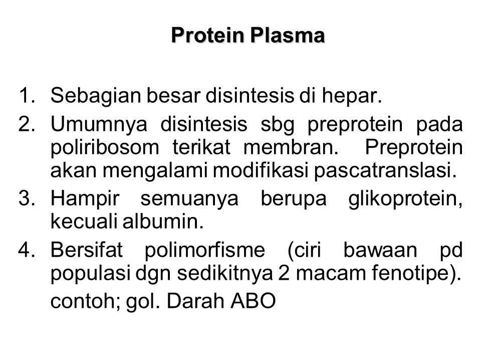 Protein Plasma Protein Plasma 1.Sebagian besar disintesis di hepar.