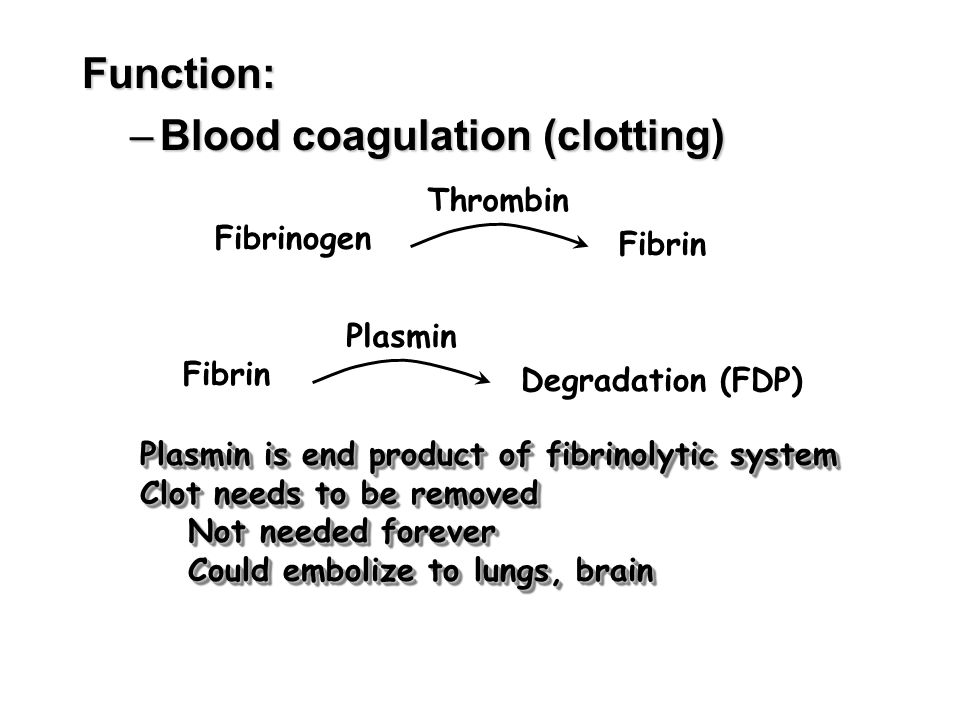 Function: –Blood coagulation (clotting) Fibrinogen Fibrin Thrombin Fibrin Degradation (FDP) Plasmin Plasmin is end product of fibrinolytic system Clot