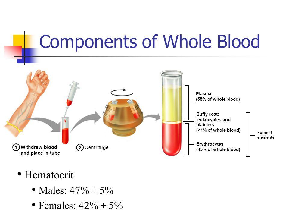 Haptoglobin Merupakan glikoprotein plasma yang mengikat hemoglobin ekstrakorpuskular.